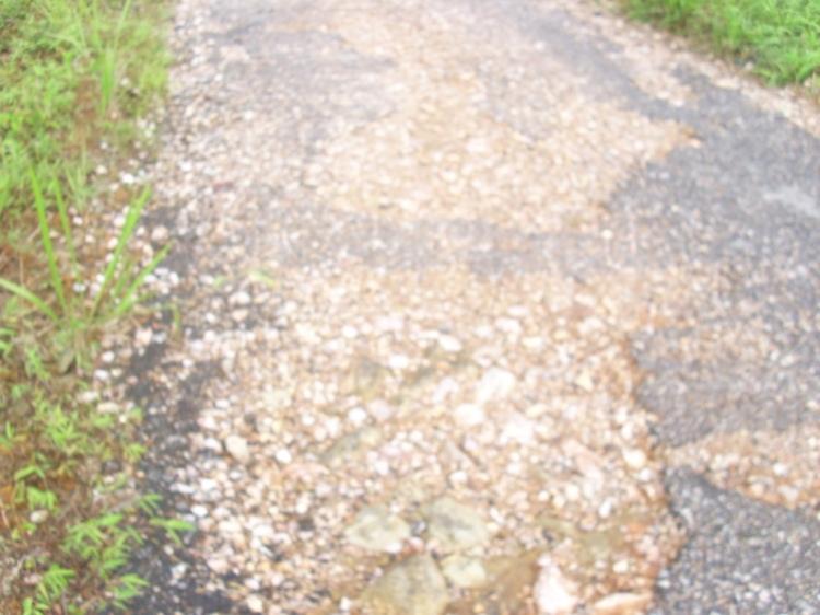 Beginilah kondisi jalan melingkar yang menyambungkan Napasengkut menuju Sinderrung. Jika tidak segera dilakukan perbaikan maupun perawatan jalan, maka kondisi kerusakan seperti terlihat dalam gambar akan semakin parah. GETA_PAKPAK.COM