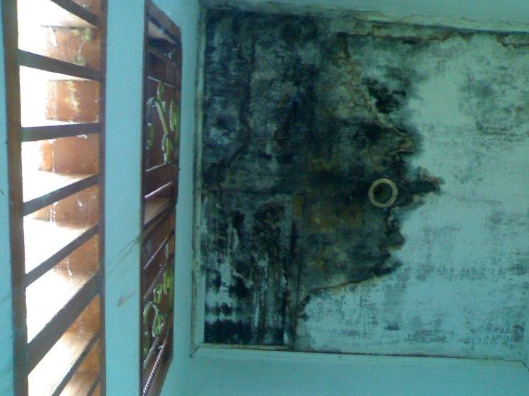 GEDUNG KANTOR BUPATI BUTUH PERAWATAN. Terlihat dalam gambar salah satu ruang kamar mandi pada Gedung Utama Kantor Bupati Pakpak Bharat yang sudah lapuk dan dipenuhi bercak hitam pertanda adanya air yang mengendap. Diharapkan kepada instansi terkait untuk segera melakukan perawatan. @