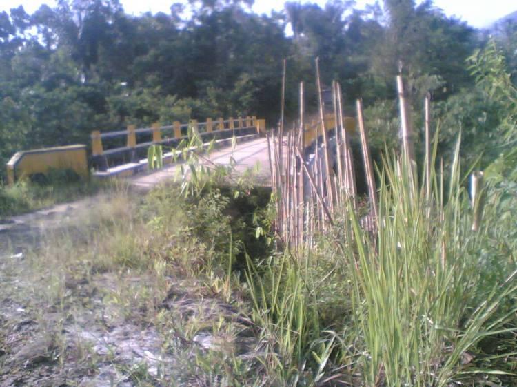 JEMBATAN LAE ORDI CIKAOK TIDAK BERFUNGSI. Terlihat dalam gambar Jembatan Lae Ordi yang dibangun di Desa Cikaok Kecamatan Sitellu Tali Urang Julu (STTU JULU) Pakpak Bharat yang sejak dibangun pada Tahun Anggaran 2007 tidak dapat difungsikan karena pelepasan hak tanah warga pada jalan masuk jembatan tersebut belum dapat dipecahkan. @