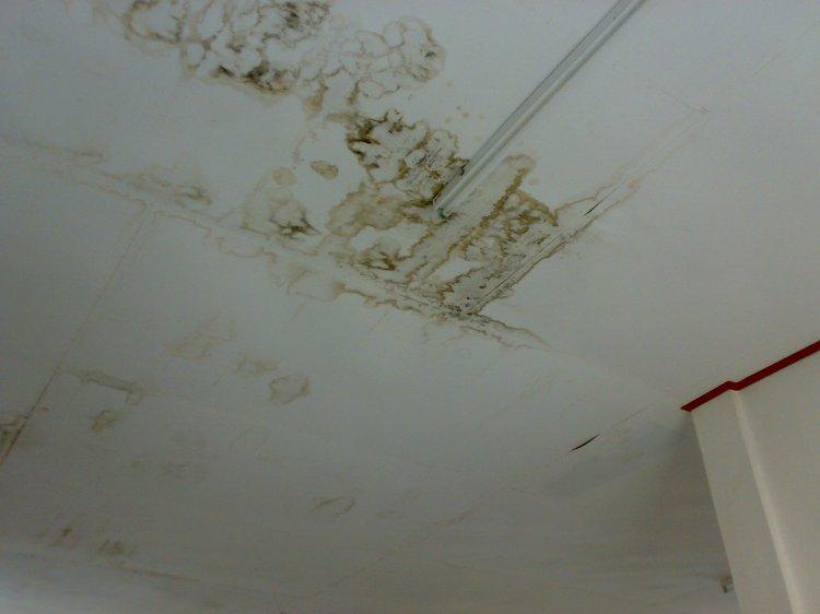 Asbes Gedung Badan penyuluh Pertanian Pemkab Pakpak Bharat Bocor, seperti terlihat dalam gambar salah satu asbes yang sudah membusuk sejak beberapa bulan terakhir. @