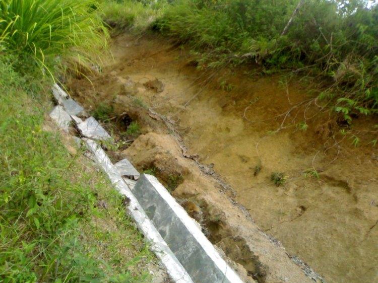 Beginilah kondisi parit semen yang ambruk pada jalan Kuta Delleng, sementara bangunan parit semen tersebut belum lama dibangun oleh pihak pemerintah Kabupaten Pakpak Bharat. @