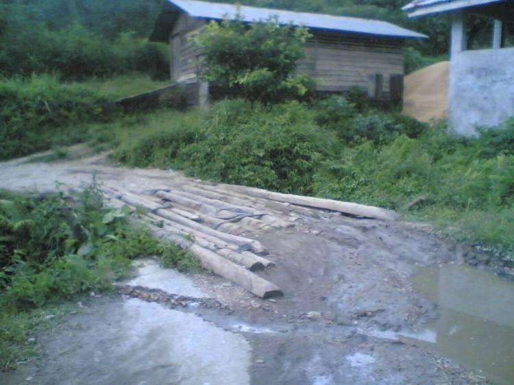 Kondisi jembatan yang terbuat dari batang pinang ini sudah berlangsung lama, namun hingga saat ini belum mendapat perhatian dari pihak pemerintah Kabupaten Pakpak Bharat. @