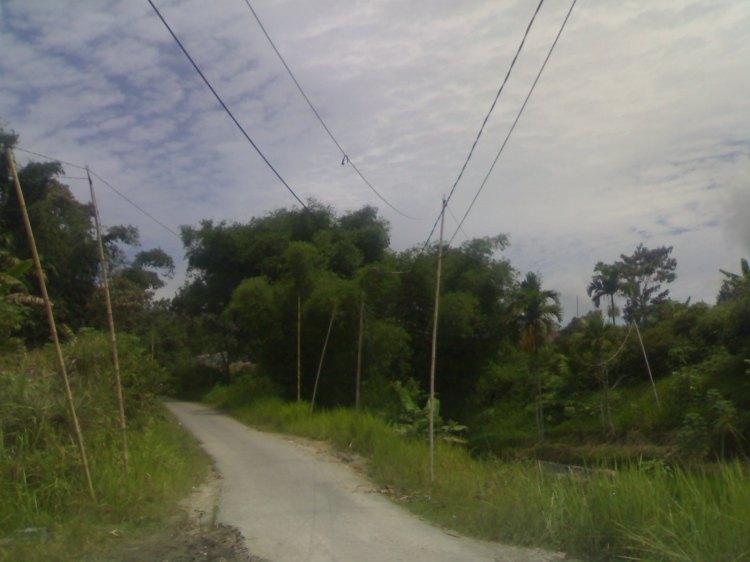 Beginilah kondisi kerawanan jaringan listrik yang disambung dari pemukiman Dusun barisen ke kawasan Napasengkut Salak Kabupaten Pakpak Bharat. @