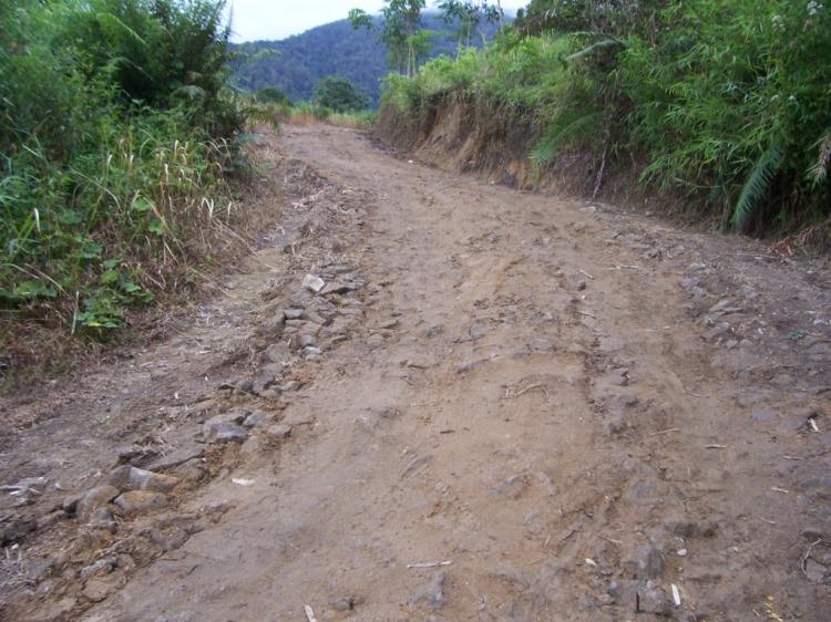 Inilah salah satu kegiatan PNPM di Kecamatan STTU JEHE Pakpak Bharat dengan pembukaan dan perkerasan jalan yang harus menunggu lanjutan tahun kedepannya dengan kegiatan PNPM itu juga. Sementara jalan tersebut relatif penting bagi warga petani untuk peningkatan hasil pertanian warga di kawasan itu. @