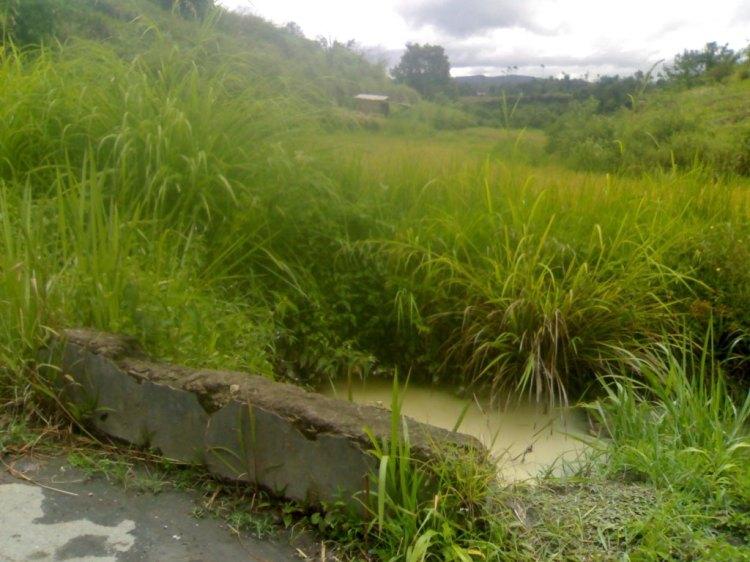 Parit Semen diseputaran jalan barisen – Napatolong yang sudah mengalami kerusakan sehingga seringkali menyebabkan banjir di kawasan itu karena gorong-gorong yang tertutup. @