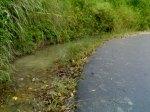 Salah satu tikungan Sirpang Jambu Kecamatan Siempat Rube Pakpak Bharat yang selalu menjadi lokasi genangan air. @