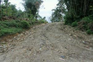 Pembukaan Jalan Butuh Pengawasan Serius